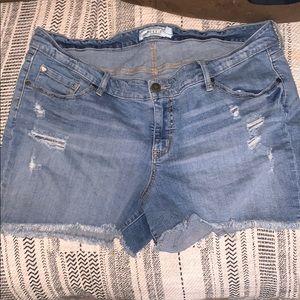 Torrid denim shorts